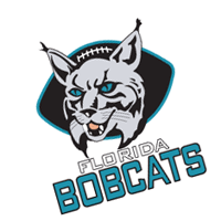Florida Bobcats vector