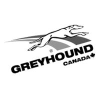 GREYHOUND CANADA vector