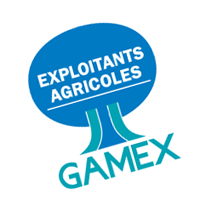 Gamex 46 download