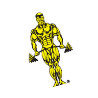 Gold's Gym 137 vector