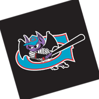 Greensboro Bats 61 vector