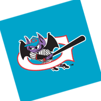 Greensboro Bats 62 vector