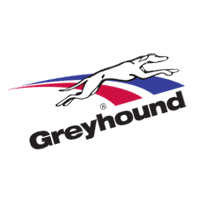Greyhound 2 vector