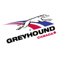 Greyhound Canada 2 vector