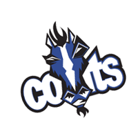 Indianapolis Colts 17 vector
