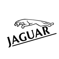 Jaguar 3 download