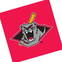 Jamestown Jammers 39 vector
