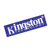 Kingston Technology 56 vector