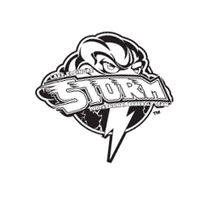 Lake Elsinore Storm 49 vector