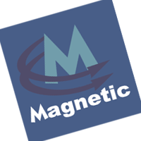 Magnetic vector