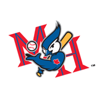 Medicine Hat Blue Jays 101 vector