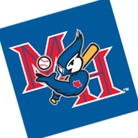 Medicine Hat Blue Jays 102 vector