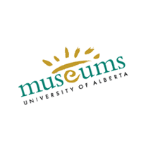 Museums vector