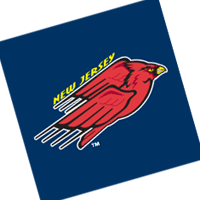 New Jersey Cardinals 176 vector