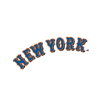 New York Mets 208 vector