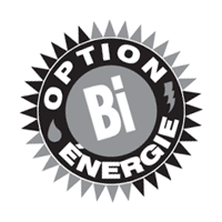Option Bi-energie vector