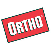 Ortho 2 download