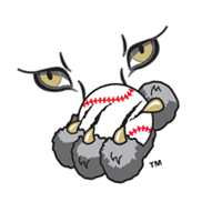 Ottawa Lynx 172 download