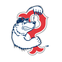 Pawtucket Red Sox 163 vector