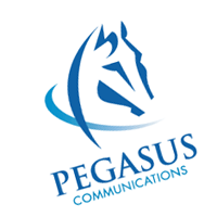 Pegasus Communications 49 vector