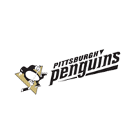 Pittsburgh Penguins 130 download