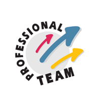 Professional Team vector