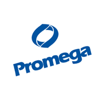 Promega download