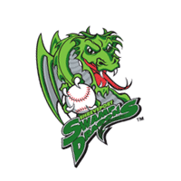 Shreveport Swamp Dragons 72 vector