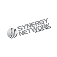 Synergy Network vector