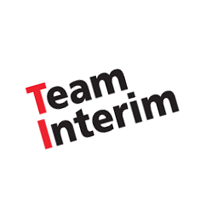 Team Interim vector