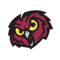 Temple Owls 131 vector