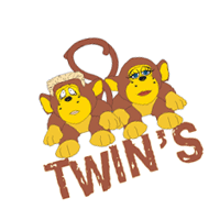 Twins vector