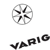 VARIG AIR 2 vector