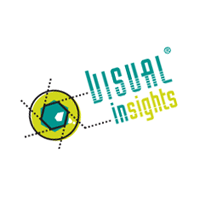 Visual Insights vector
