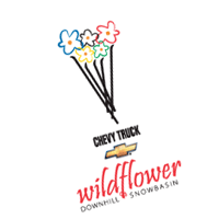 Wildflower vector