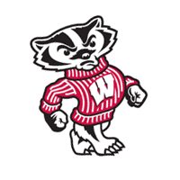 Wisconsin Badgers 91 vector