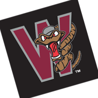 Wisconsin Timber Rattlers 95 vector