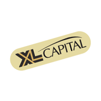 XL Capital vector