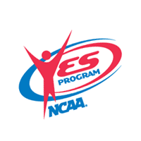 Yes Program download
